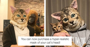 Good News For Those Of Us Who Have Long Wanted To Look Like Our Cats Because Now We Can