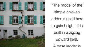 This City In Switzerland Has Ladders For Wandering Cats To Climb On And It's The Greatest Thing