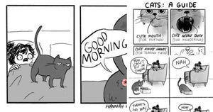 15 Cat Comics That Purrfectly Sum Up Life With Cats