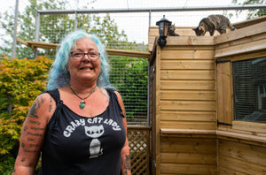 This Couple Are Facing Severe Backlash From Their Neighbours After Erecting A Giant Cat Enclosure