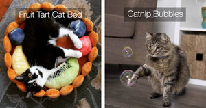 We Know How To Really Spoil Your Cats And These Items Are Purr-fect For Doing It