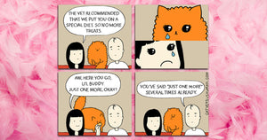 Calling All Crazy Cat Ladies So That They Can Come And Have A Look At These Hilarious Comics
