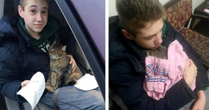 14-Year Old Boy Runs Into Incoming Traffic On Highway To Save Cat That Was Thrown Out Of The Car By Ruthless Previous Owner