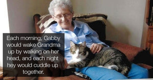 Woman Dies Within Hours of Losing Her Beloved Cat