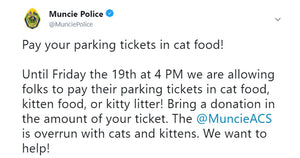 This City Let People Pay Their Parking Fines By Donating Cat Food To A Local Shelter