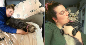 Family Reunited With Their Cat After 6 Long Years, And Now Their Home Is Full Of Joy And Snuggles