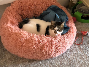 Marshmallow Cat Bed - Cats On Catnip