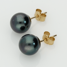 8.5mm Black Akoya Pearl 9ct Stud Earrings