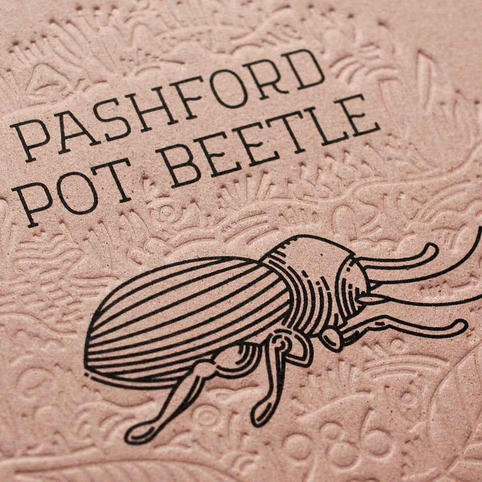 The Small Extinct füzet - Pashford Pot Beetle