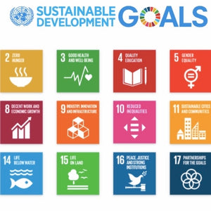 Slow Nature, UN Sustainability Goals, 2030 Agenda for Sustainable Development, Sustainability Development Goals (SDGs), Decent Work and Economic Growth, Industry, Innovation and Infrastructure, Responsible Consumption and Production, Climate Action, Partn