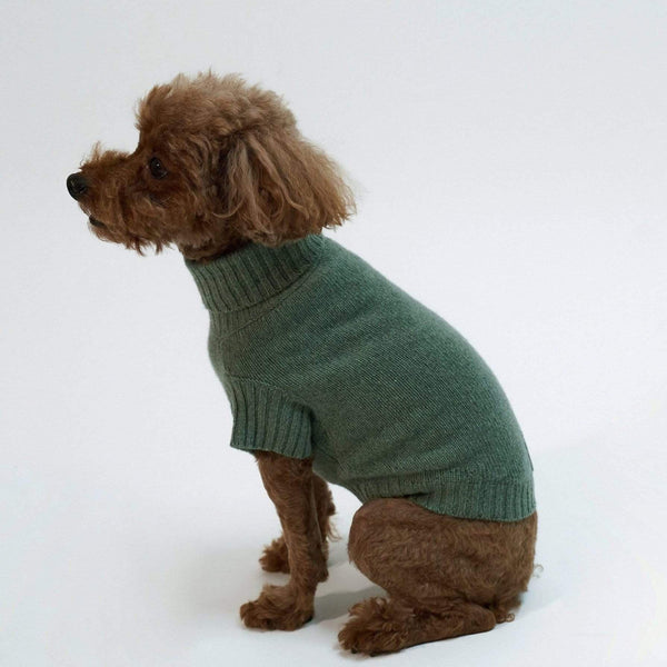 Baby & Taylor Sweater DOG SWEATER HEATHER GREEN sustainable fashion ethical fashion