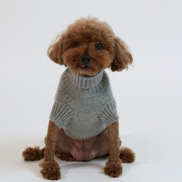 Baby & Taylor Sweater DOG SWEATER HEATHER GREY sustainable fashion ethical fashion