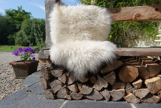 Shaggy white sheepskin