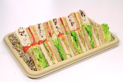 Small Rectangular Pulp Platters with Lids - GM Packaging (UK) Ltd