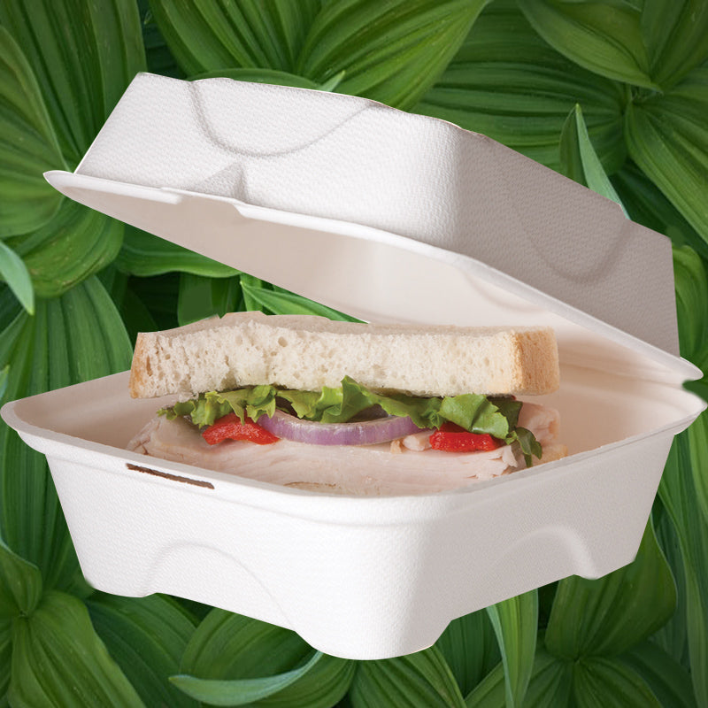 Biodegradable Bagasse Burger Boxes - GM Packaging (UK) Ltd