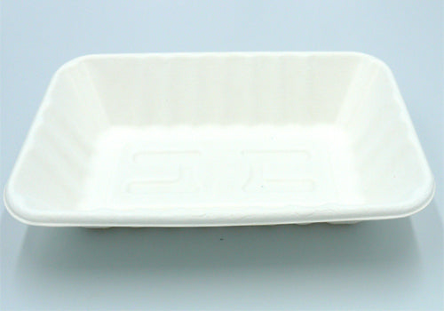 large eco friendly trays - GM Packaging