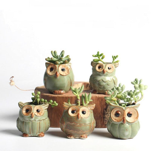 5pc/set Adorable Owl Ceramic Flower Pots