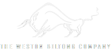 The Biltong Company Original