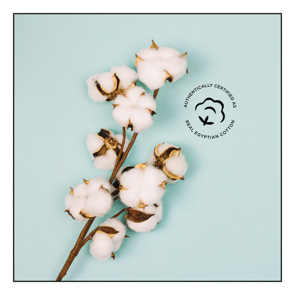 Certified Extra Long Staple Egyptian Cotton.