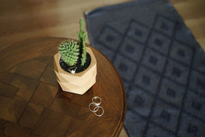 Minimal rings, silver ring, stacking rings, succulents, cactus