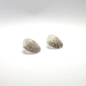 Big Shell Earrings