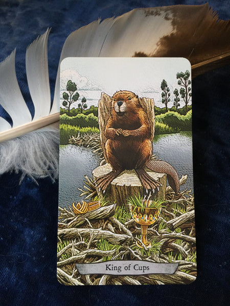 Encouragement from the Beaver.