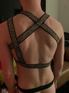 Black & Gold Harness
