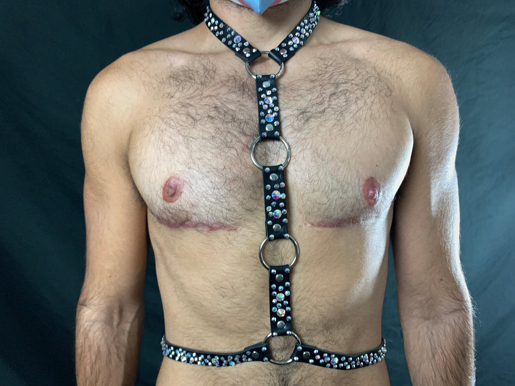 Bling Harness TJones Collection