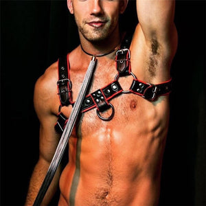 Red Black Leather Harness