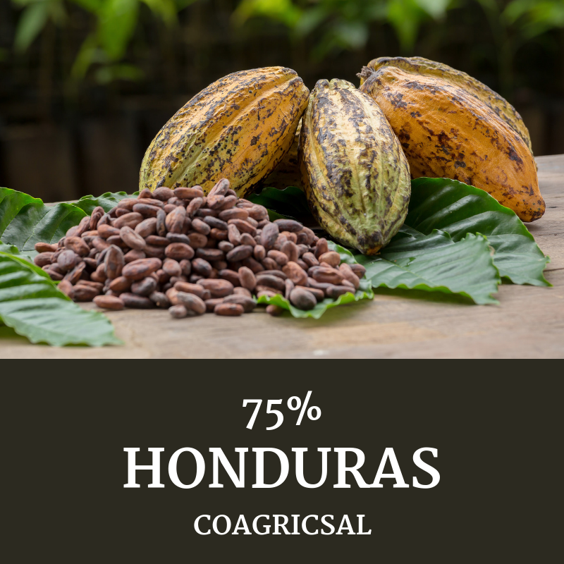 Honduras 75% COAGRICSAL - Chaleur B - Collection MicroLot