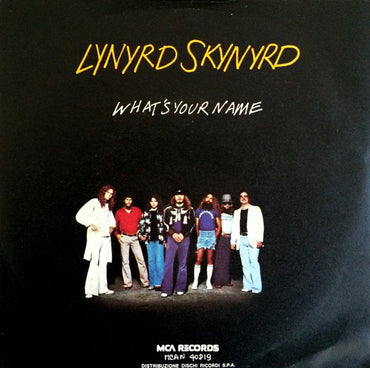 Lynyrd Skynyrd ‎– What's Your Name