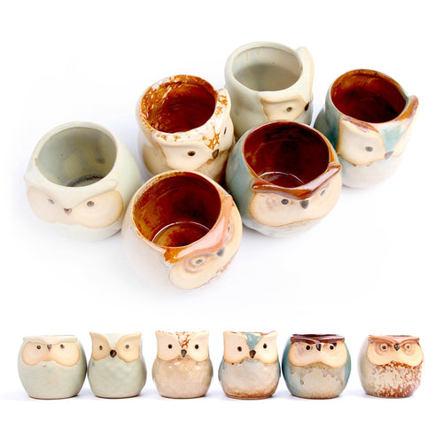 6 Piece Owl Face Decorative Flower Pot Set