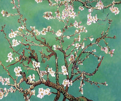 Branches of an Almond Tree in Blossom - Vincent Van Gogh