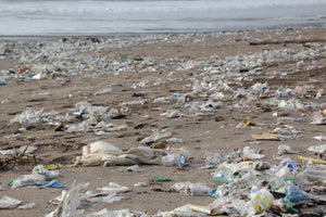 What we are doing about plastic pollution