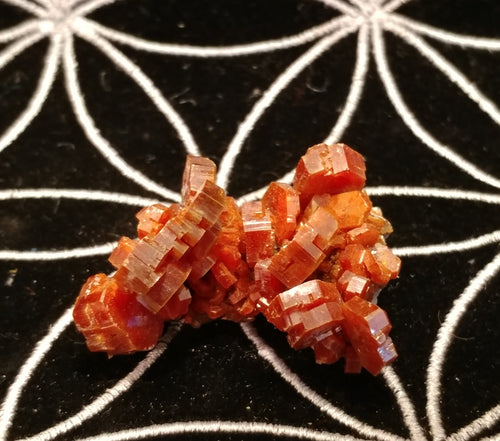 Vanadinite Cluster - Ruby Dragon