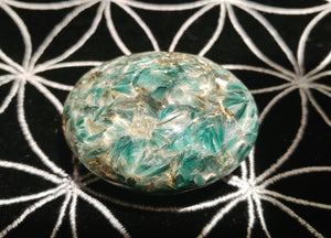 Fuchsite Kyanite Palm Stone - Ruby Dragon