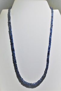 Blue Kyanite Necklace - Ruby Dragon