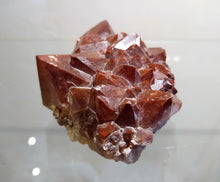 Auralite-23 Cluster - Ruby Dragon