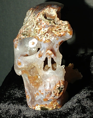 Crazy Lace Agate Crystal Skull - Ruby Dragon