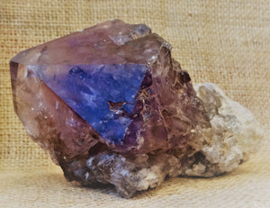 Smoky Amethyst Scepter Point - Ruby Dragon