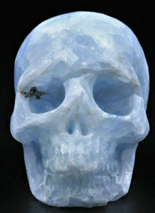Blue Calcite Crystal Skull - Ruby Dragon