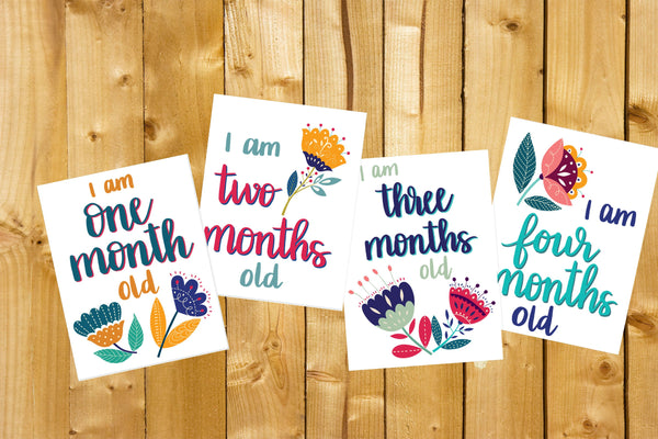 Baby Milestone Cards- Floral, Digital Download