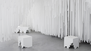 COS'S SNARKITECTURE