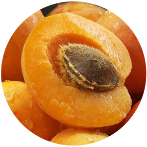 Apricot (Prunus armeniaca L.) Kernel Carrier Oil, Organic, Cold Pressed