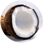 Coconut (Cocos nucifera) MCT 60/40 Oil Fractionated