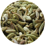 Sweet fennel oil-plants power-plant-essential oil