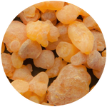 Frankincense (Boswelia carterii) Essential Oil