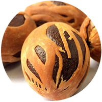 Nutmeg (Myristia fragrans) Essential Oil