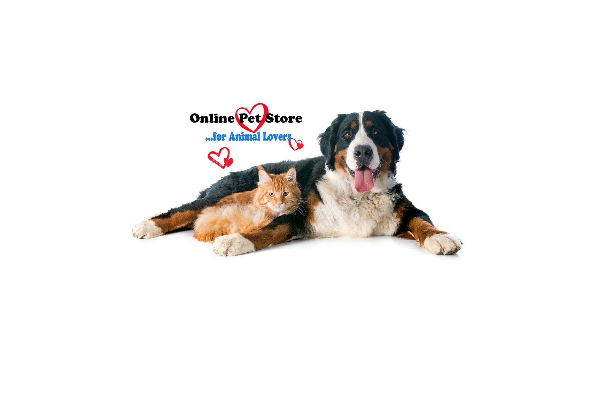 WP - Photo of a Bernese Mountain dog and an orange cat - Wear Pet - HomePage photo - Online Pet Store for Pet Parents and Animals Lovers - with some drawings of hearts over the two animals
