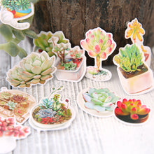 Small Succulents + Cacti Photo Stickers